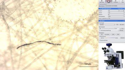 Unabhängige Laboruntersuchungen bestätigen unbekannte schwarze Fasern an Corona-Teststäbchen