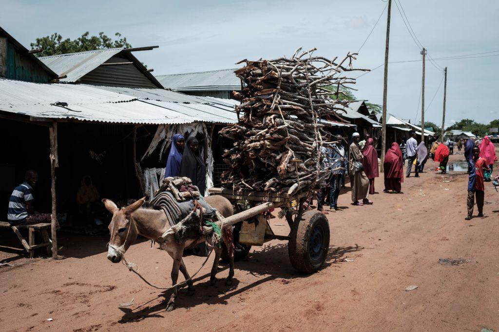 Kenia will Lager mit mehr als 400.000 Flüchtlingen umgehend schließen