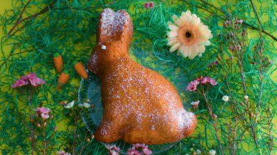 Möhre-Kokos-Hase – oder die zufällige Rettung des Sonntagskuchens