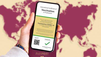 """Ex-Pfizer Vizepräsident warnt: """"Impfpässe ermöglichen vollständige Kontrolle über die Menschen"""""""