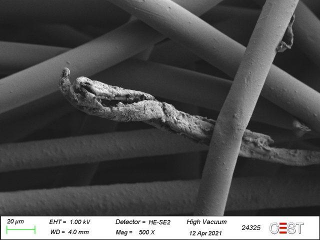 Unter dem Elektronenmikroskop: Schwarze Fäden sind rau
