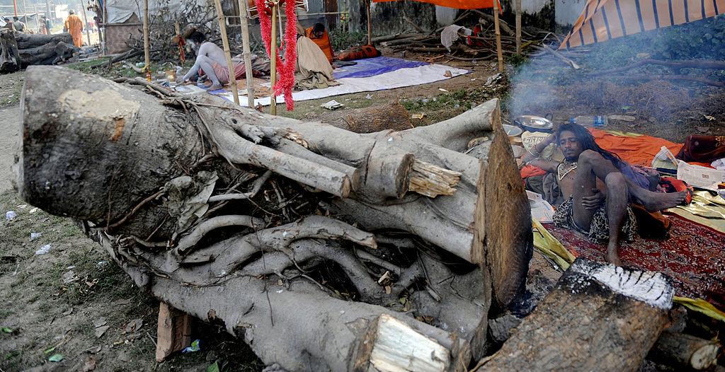 """Mehrere Tote durch Zyklon """"Tauktae"""" in Indien – Kampf gegen Covid-19 erschwert"""