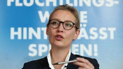 Fraktionsvorsitzende Weidel will AfD-Spitzenkandidatin werden