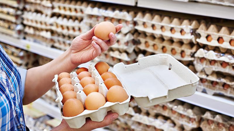 """Klöckner: Eier werden """"ein paar Cent teurer werden"""""""