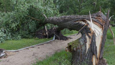 Gewitterfront mit Tornado im Münsterland – rund 30 Häuser betroffen
