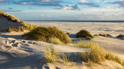 Die friesische Heimat – Von Harbert Harberts