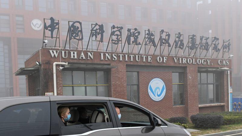 Eine Patentanmeldung stellt die offizielle Virus-Geschichte infrage.