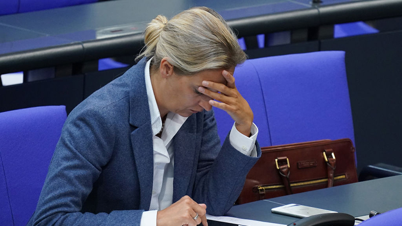 Weidel-Spende: AfD muss fast 400.000 Euro Bußgeld zahlen