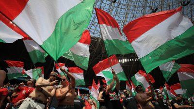 """Ungarn will Nationalfarben für Stadien: """"Lasst uns alle Stadien rot-weiß-grün färben!"""""""