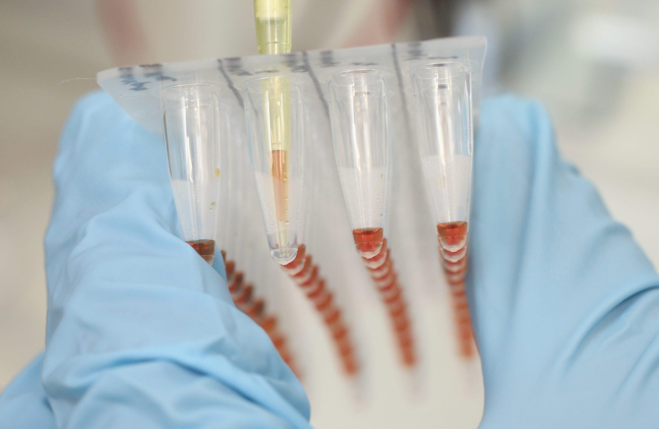DNA-basierte Speicherchips, synthetische DNA und eine industrielle Allianz (Teil 2)