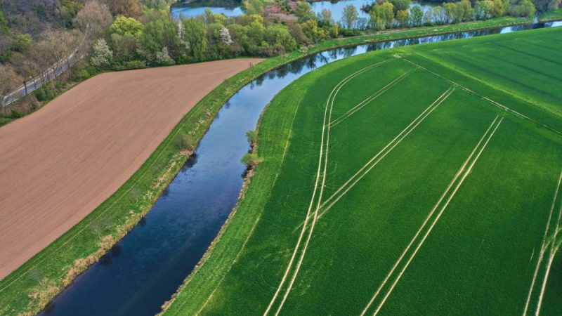 Pestizide von Feldern belasten deutsche Gewässer.