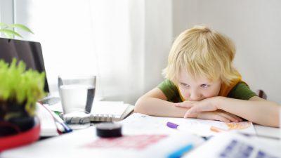 """Krise der Schule: Was stattfand war """"Buchdruckkultur in Reinform, bloß elektrisch"""""""