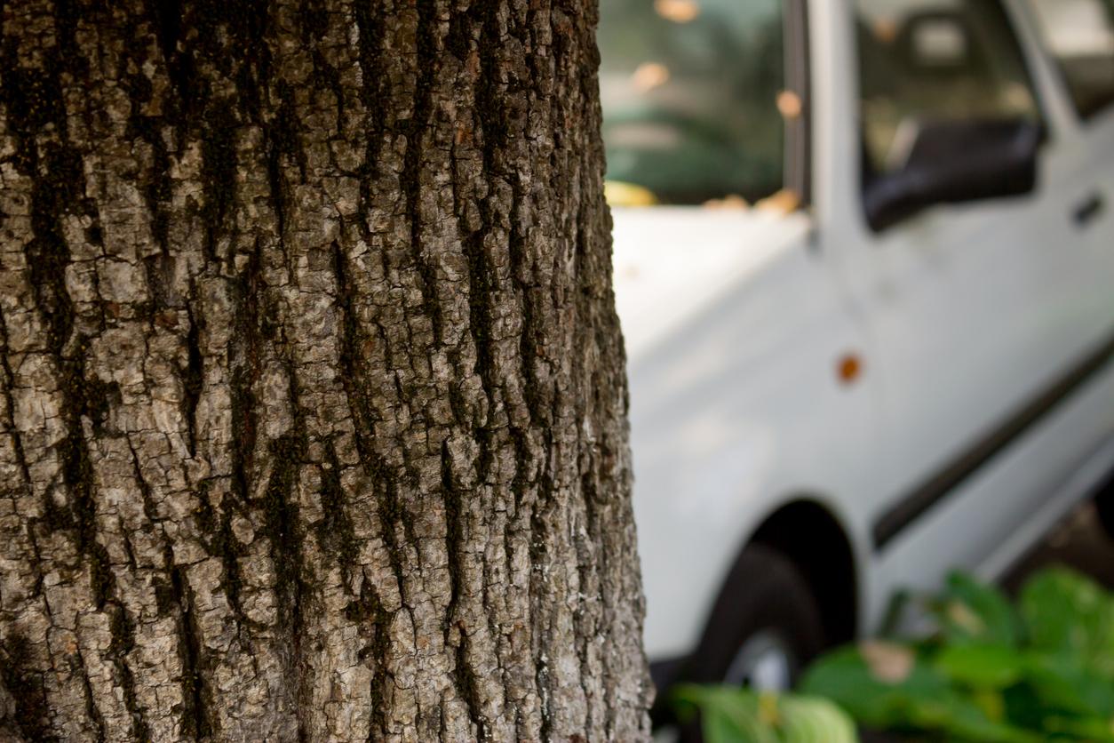 Neunjährige baut in Thüringen Unfall mit Auto