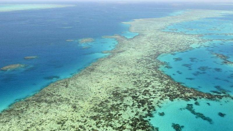 Australien kämpft um Welterbe-Status des Great Barrier Reefs