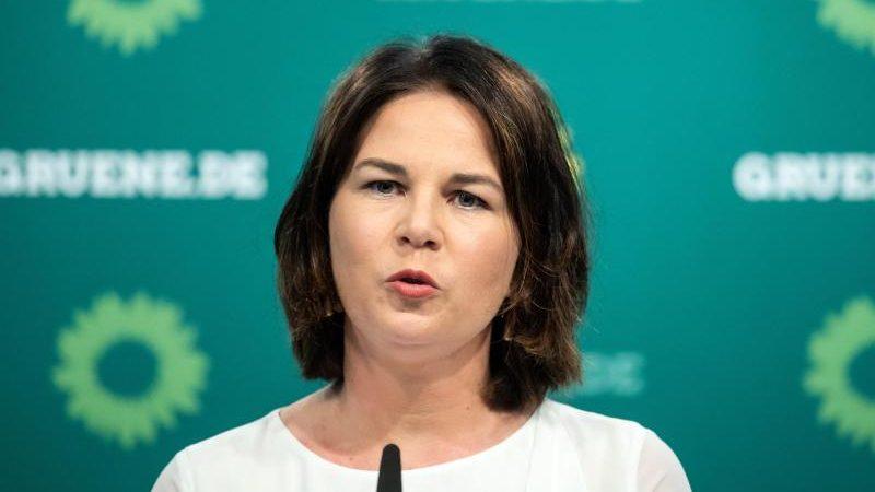 """Palmer verteidigt Parteikollegin Baerbock in Debatte um das Wort """"Neger"""""""
