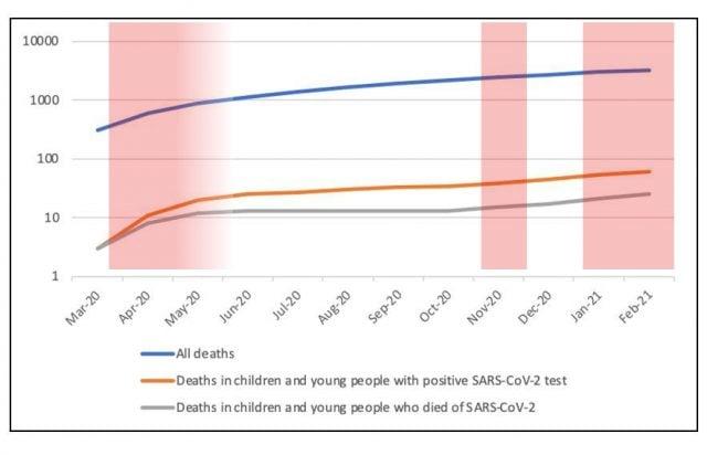 Kumulierte monatliche Todesfälle von Kindern und Jugendlichen in Großbritannien im Verlauf der Corona-Krise mit Lockdowns (rot).