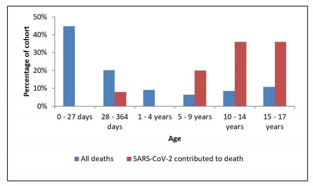 Todesfälle aller Todesursachen und COVID-19 nach Altersgruppen.