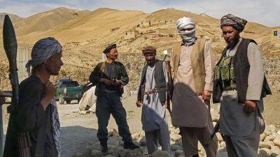 Afghanistan und die internationale Gemeinschaft: Das Land teilen, kein totaler Rückzug?