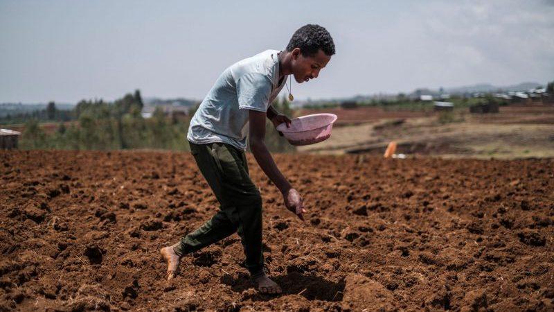 """Business-Analyst warnt vor """"westlichem Öko-Imperialismus in Afrika"""""""