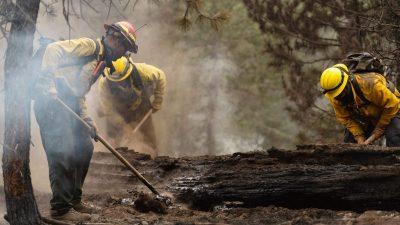 Tausende Feuerwehrleute kämpfen gegen riesigen Waldbrand in Kalifornien