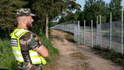 Litauen wirft Belarus gezieltes Einschleusen von Migranten vor