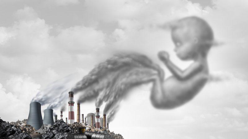 Chemikalien lassen sich auch Jahrzehnte nach Ihrem Verbot in Ungeborenen nachweisen. (Symbolbild)