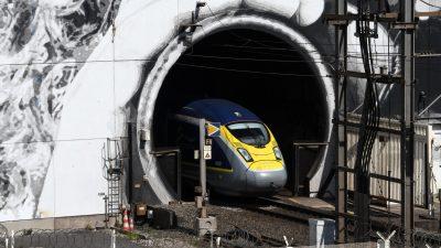 Mehr Züge zwischen Großbritannien und Europa im August