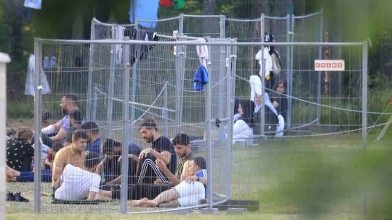 Litauen beginnt mit Zurückdrängen von Flüchtlingen an Grenze zu Belarus