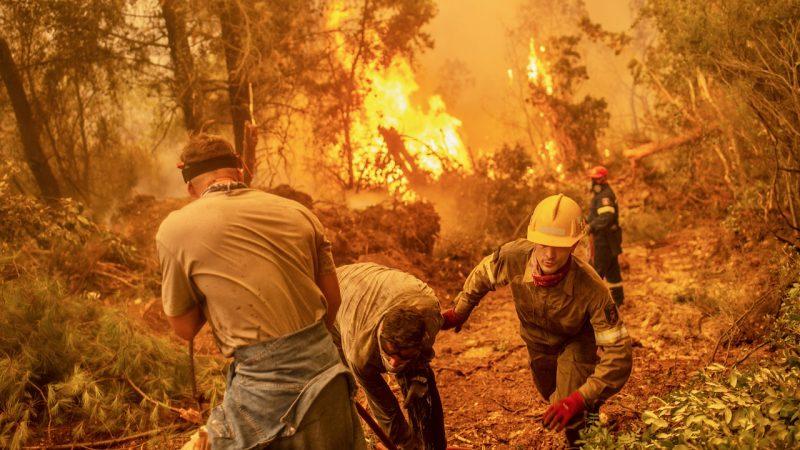 Brennen die Wälder in Griechenland für zukünftige Windkraftparks?