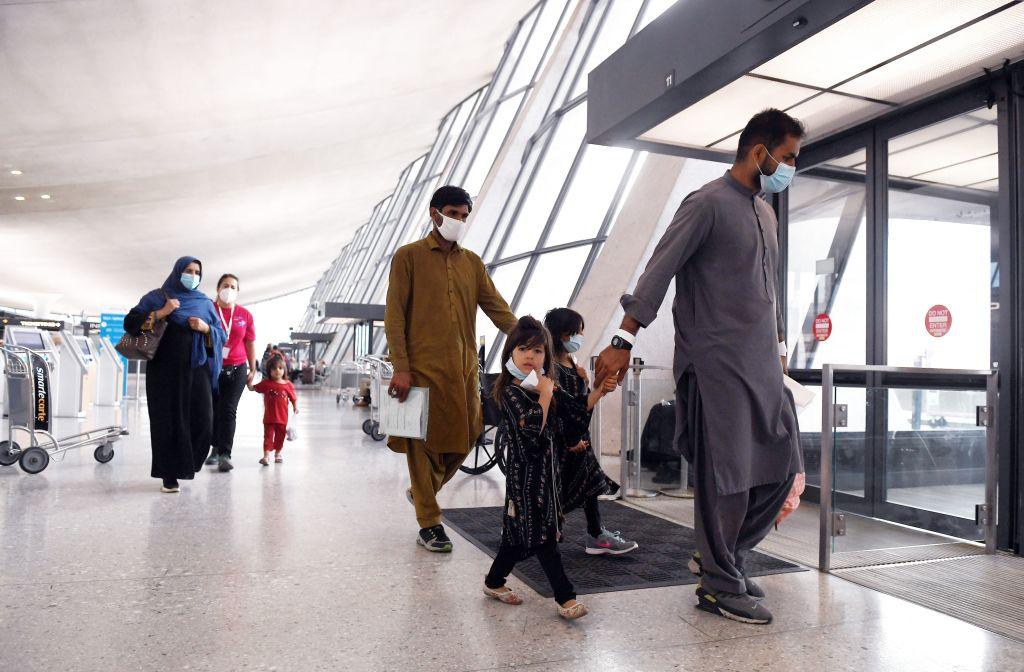 Habeck: Werden für lange Zeit keine abgelehnten oder straffälligen Afghanen abschieben können