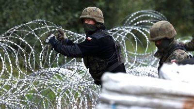 EU-Gipfel: Ein Zaun oder eine physische Grenze zu Belarus ist dringend nötig