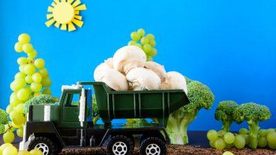 Berliner Autobahn soll Gemüsefarm werden