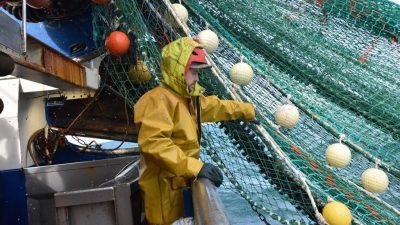 Frankreich droht Großbritannien im Streit um Fischerei-Rechte