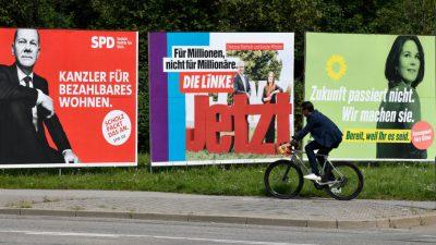 Warnung vor Linksbündnis aus Österreich: Linke verärgert