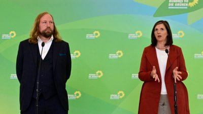 Grünen-Fraktionschefs bleiben kommissarisch im Amt