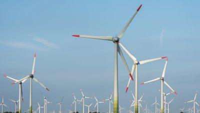 Windkraft-Volksinitiative scheitert vor Landesverfassungsgericht
