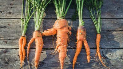 Weniger Supermärkte bieten nicht mehr makelloses Obst und Gemüse günstiger an