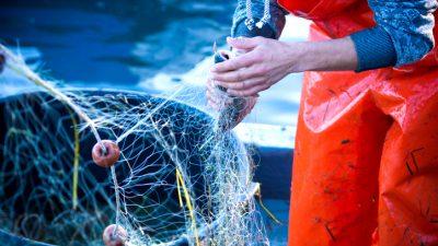 Erneuter Streit um Fischerei-Rechte zwischen Frankreich und Großbritannien