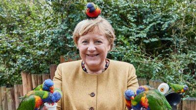 Ein Rückblick: Angela Merkel, die Papageien und das Kleid, das tief blicken ließ