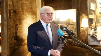 """Steinmeier: Deutschland ist """"Land mit Migrationshintergrund"""""""