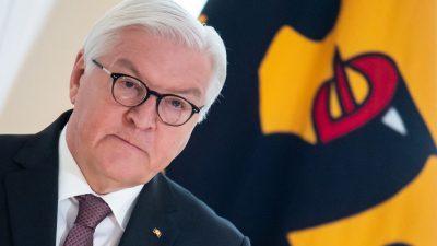 Warum Steinmeier kritischem Künstler kein Bundesverdienstkreuz gab
