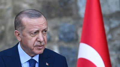 Botschafter-Eklat: Es geht vor allem um die Frage des persönlichen Machterhalts
