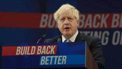 Brexit-Folgen: Vergossene Milch, Schweine für die Mülltonne – Unternehmer frustriert