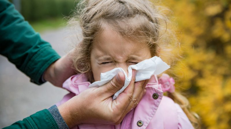 Grippe- und Erkältungswelle könnte bis zu 30 Milliarden Euro kosten