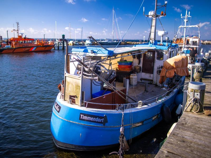 Ausgefischt? Krise deutscher Ostseefischerei spitzt sich zu